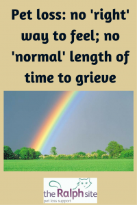 No set way to feel, no normal time to grieve