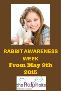 Rabbit Awareness Week 2015