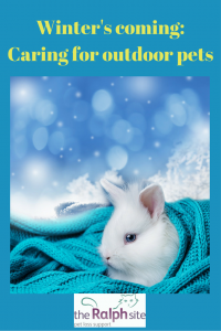 Caring for outdoor pets