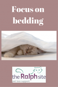 Focus on bedding pinterest1