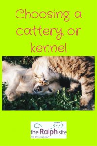Choosing a cattery or kennel pinterest
