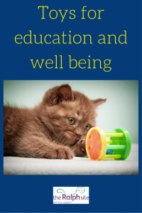 Toys for education and well being pinterest