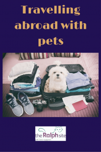 Travelling abroad with pets pinterest