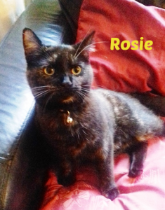 irenes-rosie-with-name
