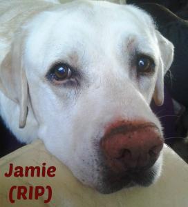 Jamie (RIP) with name