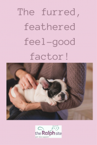 The furred, feathered feel-good factor!.pinterest