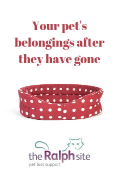 What to do with your pet's belongings after they have gone?